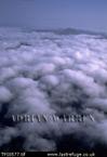 Clouds over forest, Bolivar State, Venezuela