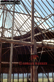 HUT BUILDING: CAMARACOTTO INDIANS, Camarata, Venezuela