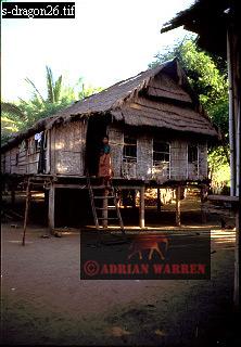 A House on Island of RINCA, Komodo DRAGON Habitat, Indonesia