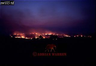BUSH FIRE, Akagera Nat. Park, Rwanda