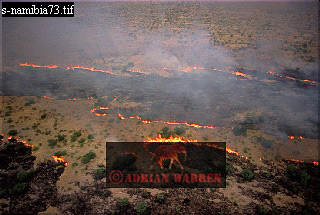 BUSH FIRE, Etosha National Park, Namibia