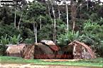 WAORANI INDIANS: Settlement at Cononaco Airstrip, Ecuador, 1993