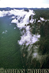 Aerials (aerial photo) of South America: Forest on slope of Mount Auyantepui, Venezuela, 2000