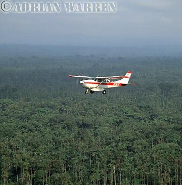Aerials (aerial photo) of South America: rainforest, rio Cononaco, Ecuador