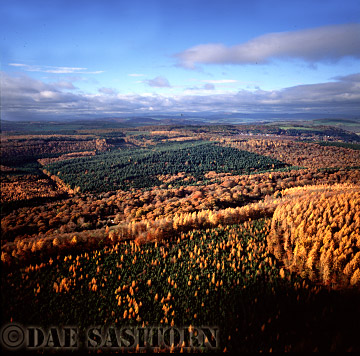 Aerial : Forest of Dean in Autumn, England, UK
