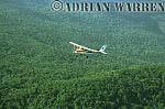 Flying over Rain forest of Venezuela, near Mount Auyantepui