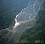 Aerials (aerial photo) of South America: rainforest and rio Napo, Ecuador