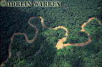 Aerials (aerial photo) of South America: rainforest with Ox-Bows, Rio Cononaco, Ecuador, 2002