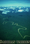 Aerials (aerial photo) of South America: rainforest, Ecuador