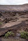 Pointa Tortuga, Isabela, Galapagos, Ecuador
