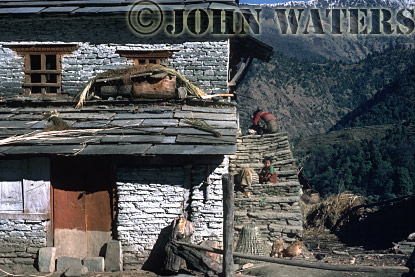 Typical House, north of Ghorepani, Nepal, Asia