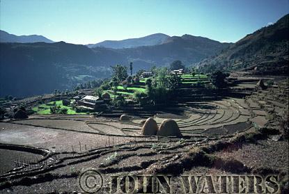 Post harvest rice paddies, Dhampus, Nepal, Asia