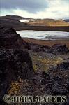 High Arctic Tundra, Barents Island, Svalbard, Norway, Scandanavia, Arctic