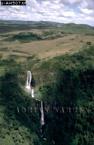 Aberdare Highlands, Kenya, 1988