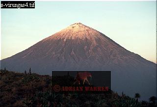 MT. KARISIMBI, Virunga Volcanoes, Rwanda