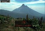 MT. MIKENO, Virunga Volcanoes, Rwanda