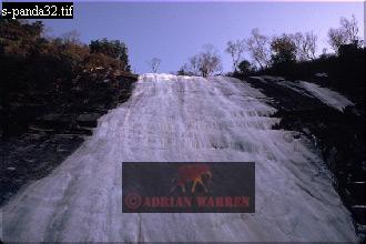Frozen WATERFALL, Qinling Mts. China, Giant Panda Habitat, Shaanxi, China, 1993