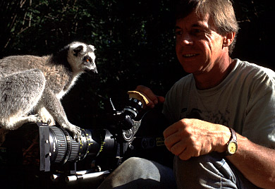 Ring-tailed Lemur (Lemur catta) with Adrian Warren, Berenty, Southern Madagascar