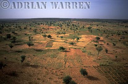 Aerials (aerial image) of Africa : Agriculture on plateau area near BANDIAGARA,Mali