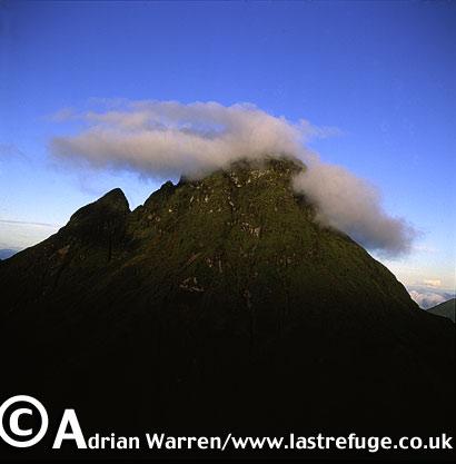 Aerials (aerial image) of Africa: Mount Mikeno, Virunga Volcanoes, Rwanda, 2003