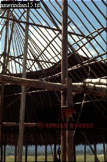 HUT BUILDING: CAMARACOTTO INDIANS, Camarata, Venezuela, 1976