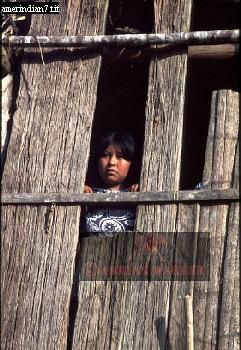 CARAUARI Girl: AMERINDIANS, Rio Jurua, Brazil, 1978