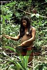 WAORANI INDIANS: Manioc Plantation, Cononaco Area, Ecuador, 1983