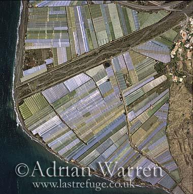 Aerials (aerial image): Costa Del Sol and Plant Nurseries, Spain, Europe