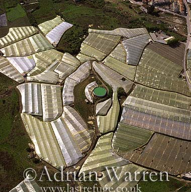 Aerials (aerial image): Costa Del Sol Plant Nurseries, Spain, Europe