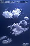 Fine weather Cumulus clouds, Texas, USA