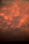 Mammatus at sunset, Oklahoma, USA