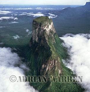 Aerials (aerial photo) of Tepuis, South America: Cerro Autana, Venezuela