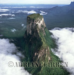 Aerials (aerial photo) of Tepuis, South America: Cerro Autana, Venezuela