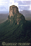 Aerials (aerial photo) of Tepuis, South America: Cerro Autana and rainforest, Venezuela