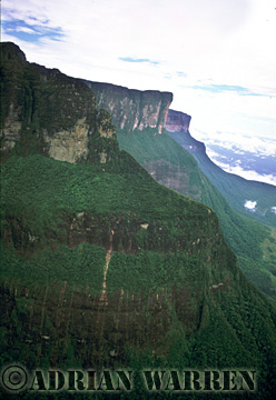 Aerials (aerial photo) of Tepuis, South America: Mount Auyantepui, Venezuela