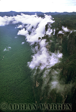 Aerials (aerial photo) of Tepuis, South America: Mount Auyantepui in clouds, Venezuela