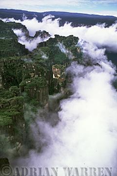 Aerials (aerial photo) of Tepuis, South America: Mount Auyantepui in clouds, Venezuela