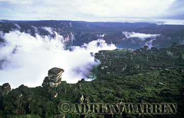 Aerials (aerial photo) of Tepuis, South America: Mount Auyantepui, its summit in clouds, Venezuela