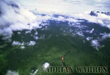 Aerials (aerial photo) of Tepuis, South America: Churun Gorge with forest and river Churun, Near Auyantepui, Venezuela
