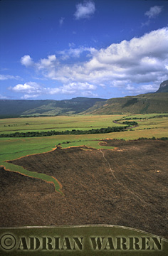Aerials (aerial photo) of Tepuis, South America: Burnt marks on land near Mount Auyantepui, Venezuela
