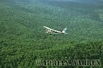 Aerials (aerial photo) of Tepuis, South America: Cessna over forest in Churun Gorge, near Mount Auyantepui, Venezuela