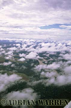 Aerials (aerial photo) of Tepuis, South America: Gran Sabana under clouds, Venezuela