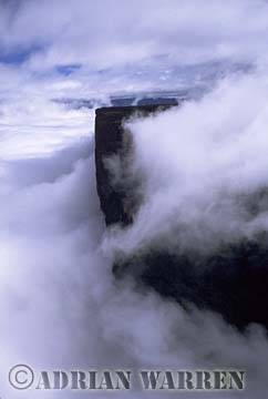 Aerials (aerial photo) of Tepuis, South America: Mount Kukenaam in clouds (Kukenan, Cuguenan), Venezuela