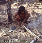 Waorani Indian : Blowgun making, rio Cononaco, Ecuador, 1983