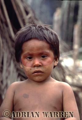 Waorani Indians : Use of ACHIOTE for decoration, rio Cononaco, Ecuador, 1983