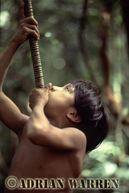 Waorani Indians : learning how to use Blow gun, rio Cononaco, Ecuador, 1983