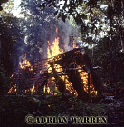 Waorani Indians, Hut burning before moving on, rio Cononaco, Ecuador, 1983