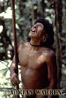 Waorani Indians : Caempaede hunting, rio Cononaco, Ecuador, 1983