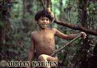 Waorani Indians : boy leaning to use Blow gun, rio Cononaco, Ecuador, 1983