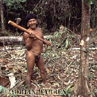 Waorani Indians : Caempaede cutting tree with Stone Axe, rio Cononaco, Ecuador, 1983